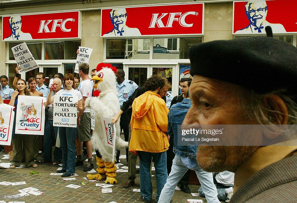 kfc peta case Although they were violating no laws on animal treatment, kfc chickens out to peta.