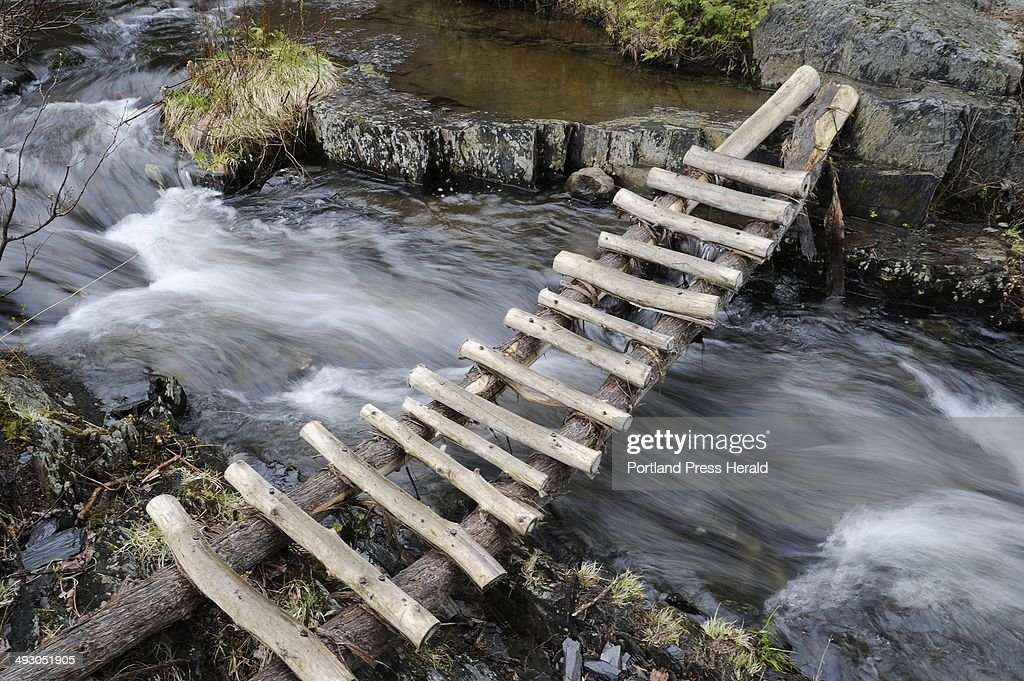 An unofficial bridge crosses the swift moving Thompson Brook on the Appalachian Trail in Monson Tuesday, May 8, 2012.