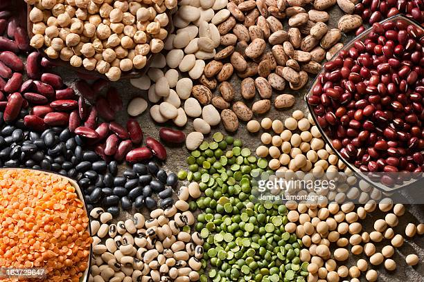 An up close picture of organic legumes