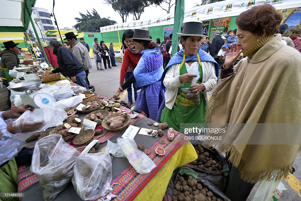 An woman buys varieties of Andean potatoes at a producers market in Lima, Peru, on June 24, 2013, walk next to a display with variety of protein rich red quinoa, an Andean cereal-like seed. Each June 24 marks in Peru Peasant Day, a day where to pay tribute to men and women in the field. AFP PHOTO/CRIS BOURONCLE