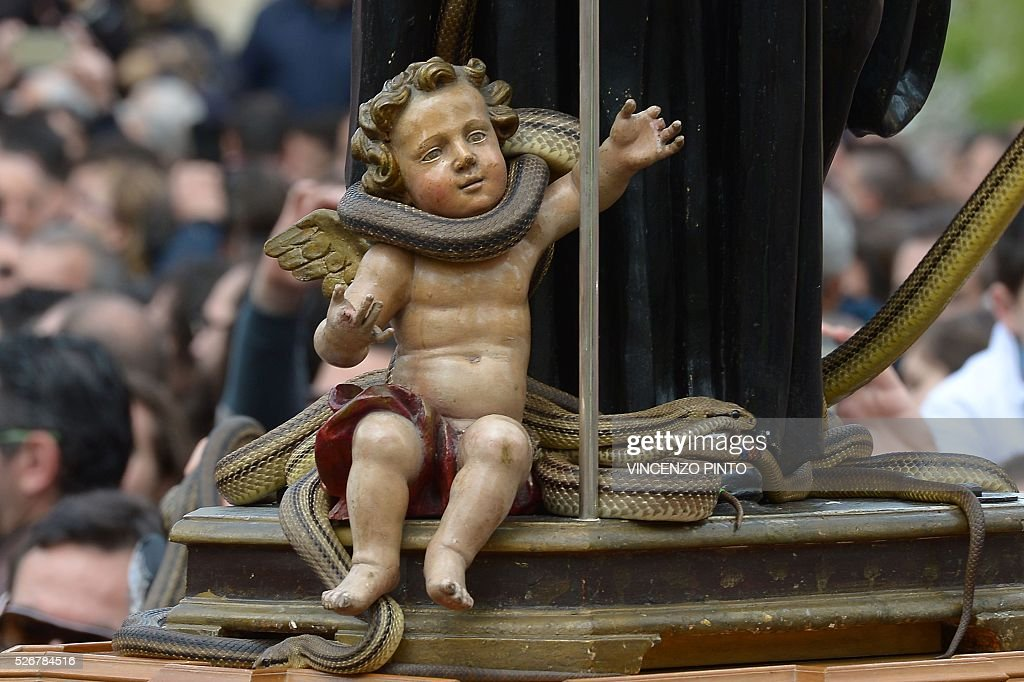 An wooden angel at the feet of a statue of Saint Domenico is covered with live snakes during an annual procession in the streets of Cocullo, a small village in the Abruzzo region, on May 1, 2016.