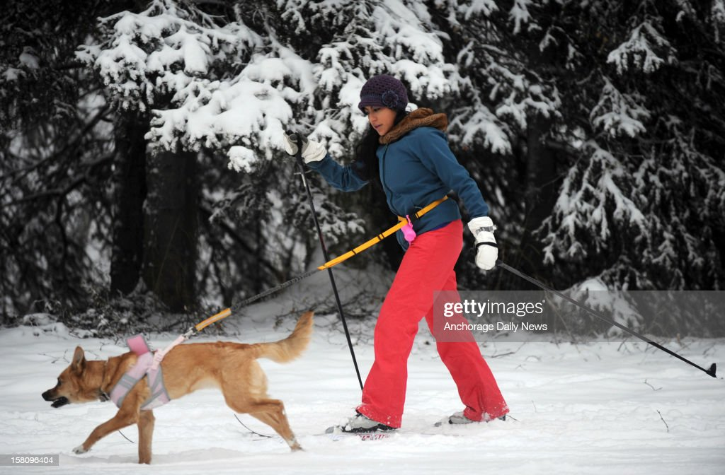 Ana Avila takes her 6-month-old dog Lola cross country skiing for the first time in the fresh snow, December 9, 2012, at Russian Jack Springs Park in Anchorage, Alaska.