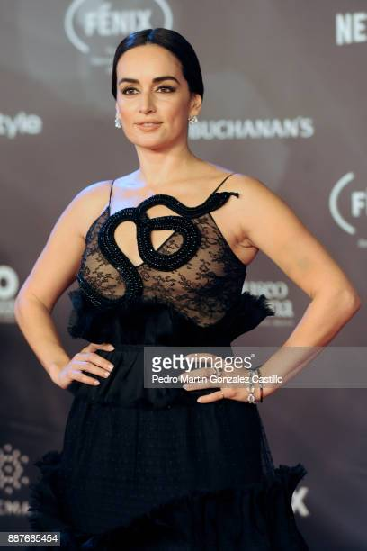 Ana de la Regera poses during Fenix Iberoamerican Film Awards 2017 at Teatro de La Ciudad on December 06 2017 in Mexico City Mexico