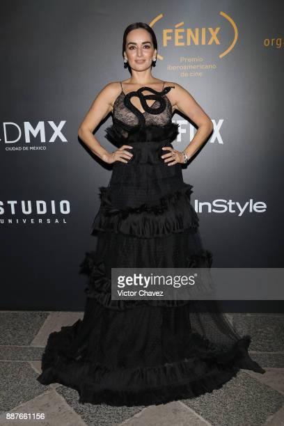 Ana de la Reguera attends the Premio Iberoamericano De Cine Fenix 2017 press room at Teatro de La Ciudad on December 6 2017 in Mexico City Mexico