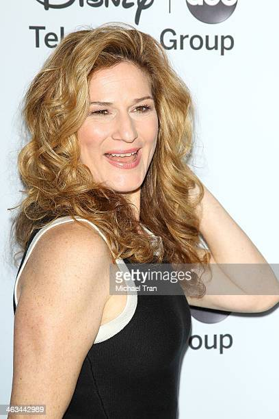 Ana Gasteyer arrives at the ABC/Disney 2014 Winter TCA party held at The Langham Huntington Hotel and Spa on January 17 2014 in Pasadena California