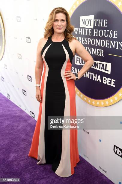 Ana Gasteyer attends Full Frontal With Samantha Bee's Not The White House Correspondents' Dinner at DAR Constitution Hall on April 29 2017 in...