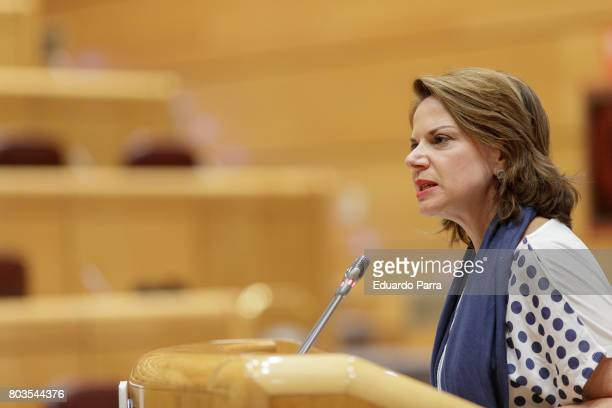 Ana Helena Chacon attends the LGBTQI Interparliamentary Plenary Session at spanish Senate on June 29 2017 in Madrid Spain The Plenary Session will...