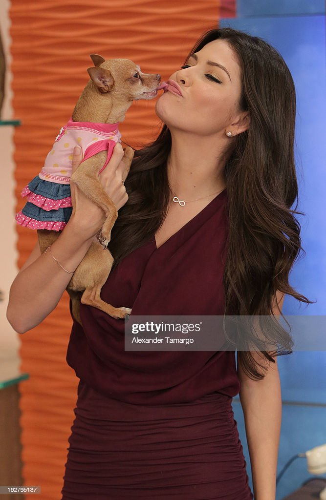 Ana Patricia Gonzalez and her dog Honey appear on Univision's Despierta America to promote her film 'The Call' at Univision Headquarters on February 27, 2013 in Miami, Florida.