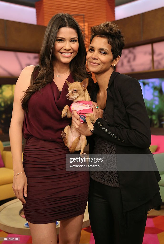 Ana Patricia Gonzalez, Honey and Halle Berry appear on Univision's Despierta America to promote her film 'The Call' at Univision Headquarters on February 27, 2013 in Miami, Florida.