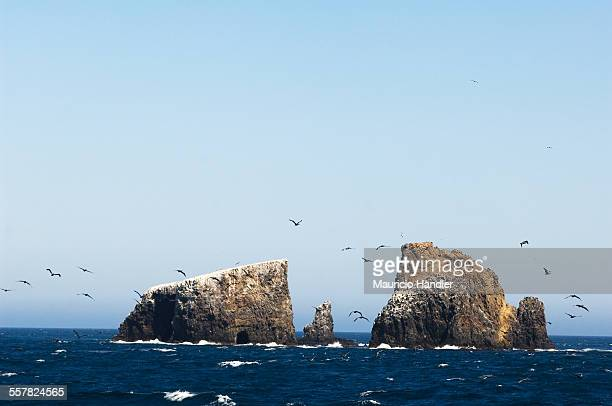 Anacapa Island, Channel Islands National Park, California, USA.