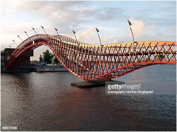 Anaconda bridge