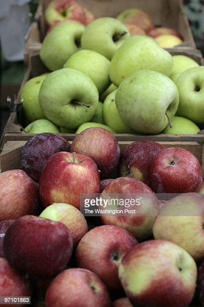 Anacostia Washington DC A variety of apples from DS Farm including Empire foreground and Mutsu background are set out for sale at the Capital Area...