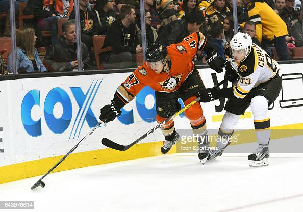 Anaheim Ducks Defenceman Hampus Lindholm keeps the puck away from Boston Bruins Left Wing Peter Cehlarik during an NHL game between the Boston Bruins...