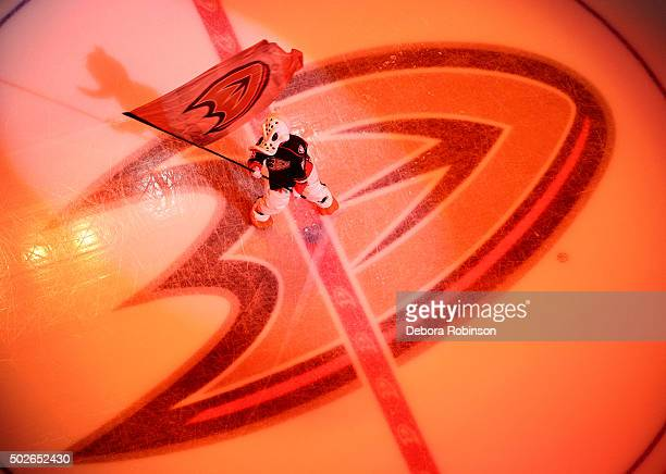 Anaheim Ducks mascot Wild Wing waves a flag at center ice before the game between the Anaheim Ducks and the Philadelphia Flyers on December 27 2015...