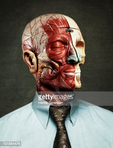 Anatomical model dressed in shirt and tie : Stock Photo