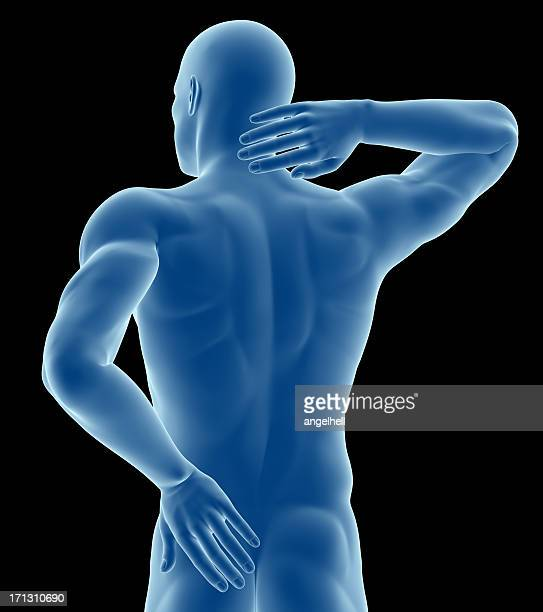 Anatomy of a man showing back pain