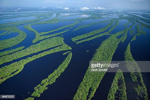 Anavilhanas Archipelago, Brazil