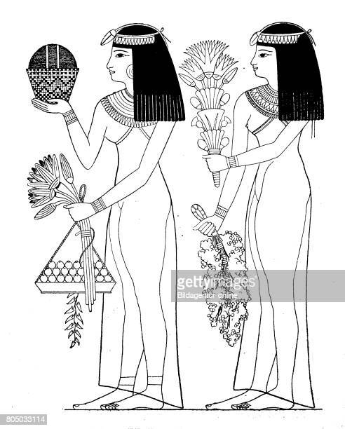 Ancient egypt Woman bring the gods flowers and fruits 10th dynasty Thebes History of fashion costume story