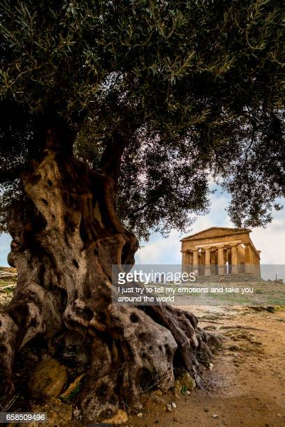 Agrigento, Italy - October 15, 2009: ancient Greek landmark in the Valley of the Temples outside Agrige