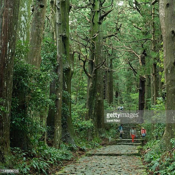 Ancient Japanese pilgrimage