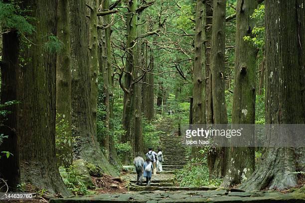 Ancient Japanese pilgrimage trail