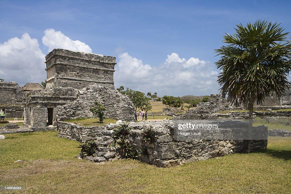 Ancient Mayan buildings at Tulum Ruins. : Stock Photo