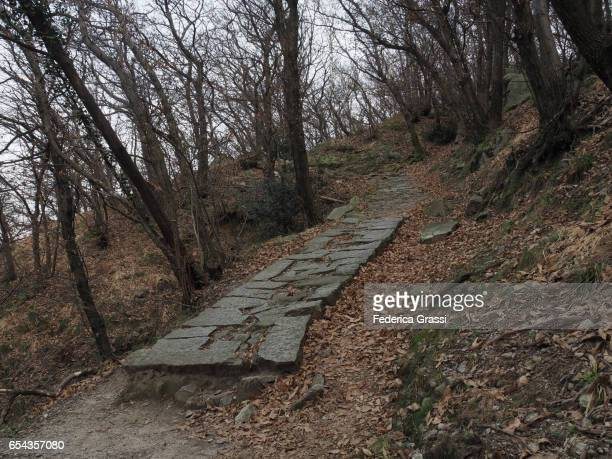 Ancient Paved Road Called Lizza On Mount Mont'Orfano