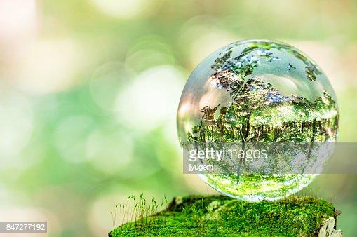 MOSS and glass globes : Foto de stock