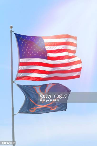 USA and veterans flags.