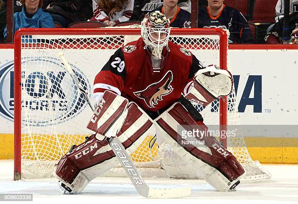 Anders Lindback of the Arizona Coyotes gets ready to make a save against the Los Angeles Kings at Gila River Arena on February 2 2016 in Glendale...