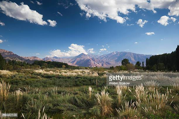 Andes Mountains and Rio Mendoza river
