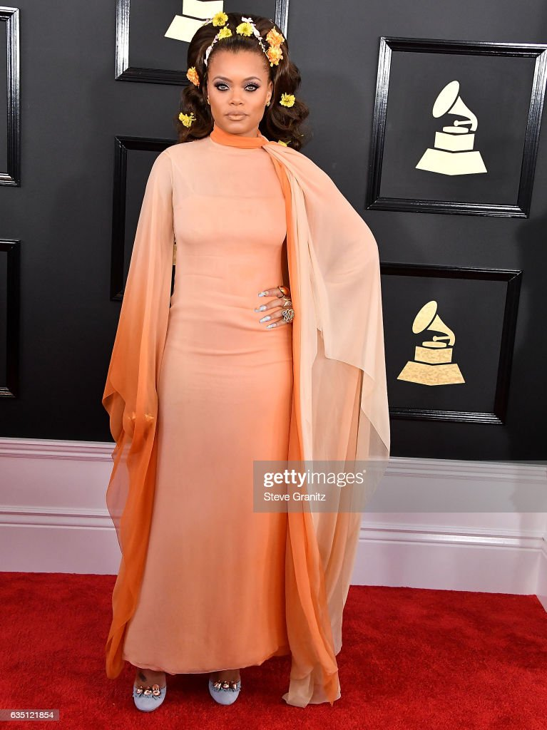 Andra Day arrives at the 59th GRAMMY Awards on February 12, 2017 in Los Angeles, California.
