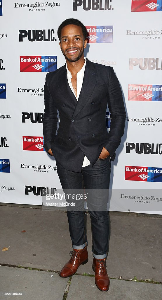 <a gi-track='captionPersonalityLinkClicked' href=/galleries/search?phrase=Andre+Holland&family=editorial&specificpeople=2010658 ng-click='$event.stopPropagation()'>Andre Holland</a> attends the The Public Theatre's Opening Night Performance of 'King Lear' at the Delacorte Theatre on August 5, 2014 in New York City.