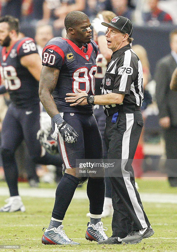 Andre Johnson #80 of the Houston Texans has words with side judge Greg Meyer #78 after he thought he was interfered with on his pass route against the Jacksonville Jaguars at Reliant Stadium on November 18, 2012 in Houston, Texas. Houston wins 43-37 in overtime.