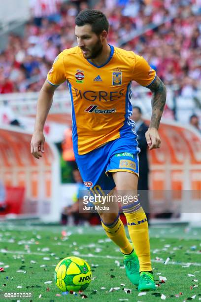 Andre Pierre Gignac of Tigres drives the ball during the Final second leg match between Chivas and Tigres UANL as part of the Torneo Clausura 2017...