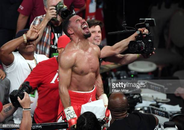 Andre Ward celebrates after winning his light heavyweight championship bout against Sergey Kovalev at the Mandalay Bay Events Center on June 17 2017...