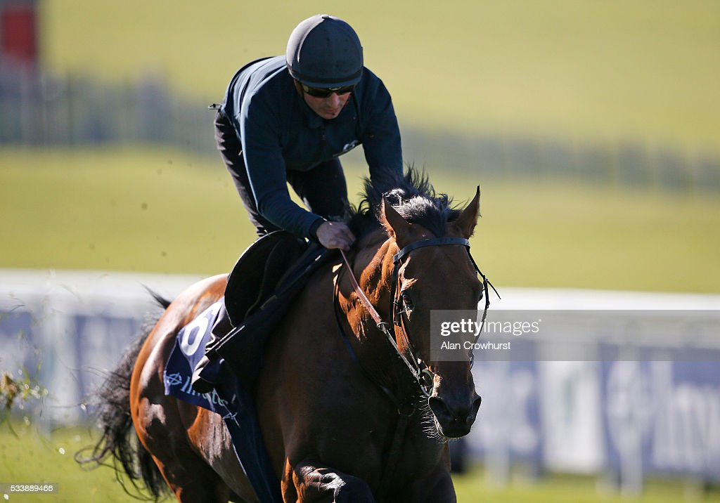 Andrea Atzeni riding Postponed have a racecourse gallop during the 'Breakfast with the Stars' morning at Epsom Racecourse on May 24, 2016 in Epsom, England.