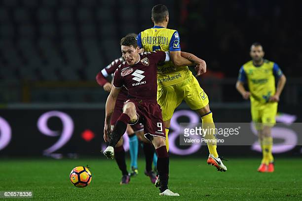 Andrea Belotti of FC Torino clashes with Alessandro Gamberini of AC ChievoVerona during the Serie A match between FC Torino and AC ChievoVerona at...