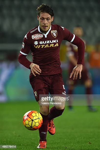 Andrea Belotti of Torino FC in action during the Serie A match between Torino FC and Genoa CFC at Stadio Olimpico di Torino on October 28 2015 in...