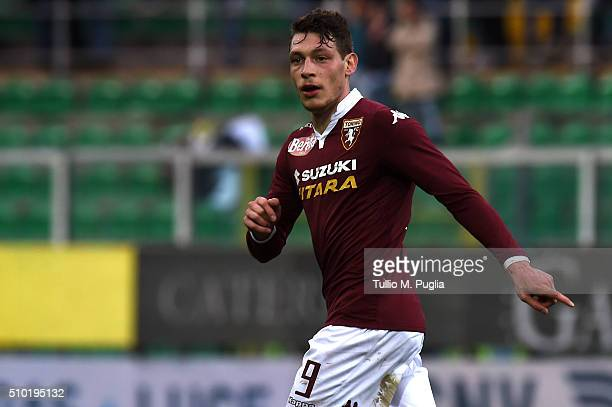 Andrea Belotti of Torino in action during the Serie A match between US Citta di Palermo and Torino FC at Stadio Renzo Barbera on February 14 2016 in...