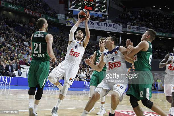 Andres Nocioni #6 of Real Madrid in action during the 2016/2017 Turkish Airlines EuroLeague Regular Season Round 11 game between Real Madrid v...