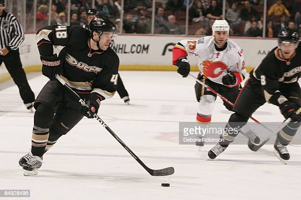 Andrew Ebbett of the Anaheim Ducks handles the puck against the Calgary Flames during the game on February 11 2009 at Honda Center in Anaheim...