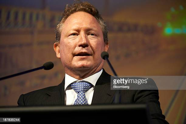 Andrew Forrest chairman of Fortescue Metals Group Ltd speaks during the company's annual general meeting in Perth Australia on Wednesday Nov 13 2013...