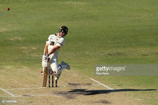 Andrew Holder of Western Australia avoids a rising delivery from Kane Richardson of South Australia during day three of the Sheffield Shield match...