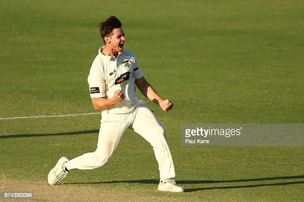 Andrew Holder of Western Australia celebrates the wicket of John Dalton of South Australia during day three of the Sheffield Shield match between...