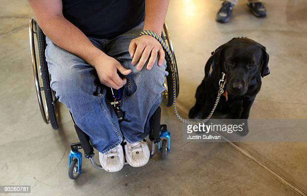Andrew Pike a veteran of the US Army 82nd Airborne who was shot and paralyzed during the Iraq war sits with his new service dog 'Yazmin' while...