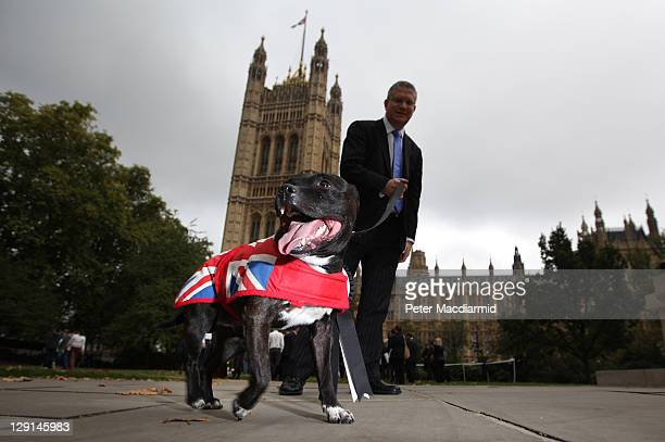 Andrew Rosindell MP walks with his staffordshire bull terrier Buster during the Westminster Dog of The Year competition in Victoria Tower Gardens on...