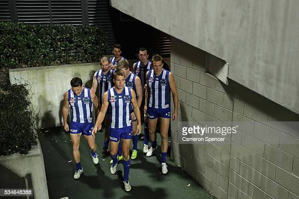Andrew Swallow of the Kangaroos leads team mates onto the field during the round 10 AFL match between the Sydney Swans and the North Melbourne...