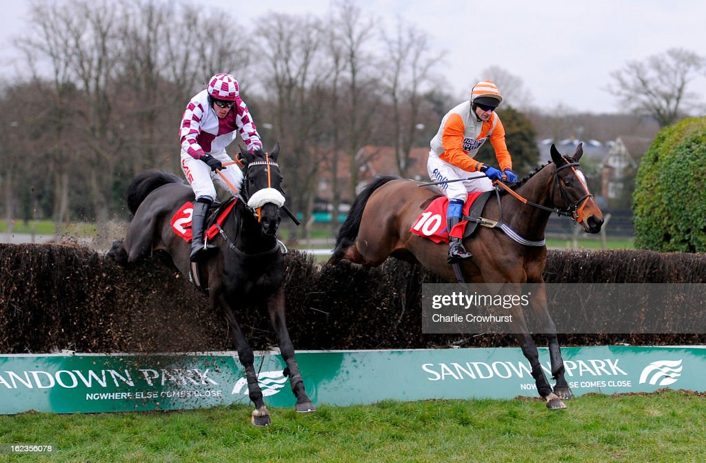 Andrew Thornton on Goring One (R) jumps the last to win The Eric's Charm handicap steeple chase, with Jason Maguire on Barlow (L) coming second at Sandown Park racecourse on February 22, 2013 in Esher, England.