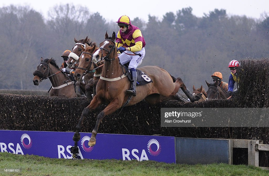 Andrew Thornton riding Somerby on their way to winning The Breathe Spa Lingfield Marriott Handicap Steeple Chase at Lingfield racecourse on February 12, 2013 in Lingfield, England.